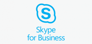 skypebiz